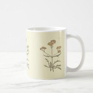 Sibirischer Baldrian-botanische Illustration Kaffeetasse
