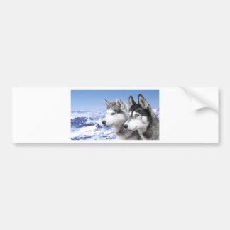 Sibirischer Husky Autoaufkleber