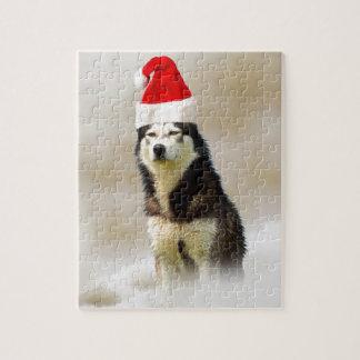 Sibirischer Schlittenhund-Hund mit Puzzle