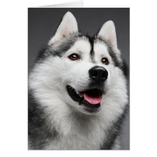 Sibirischer Schlittenhund-Welpen-Hund - hallo, Karte