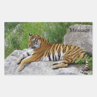 Sibirischer Tiger, der auf einem Felsen sich Rechteckiger Aufkleber