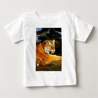 Sibirischer Tiger im Abend Baby T-shirt
