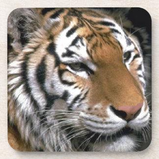 Sibirischer Tiger-Liebhaber-Kunst Untersetzer