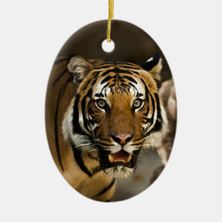Sibirischer Tiger Ovales Keramik Ornament