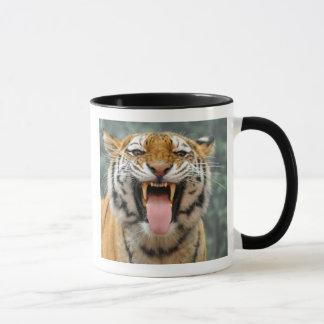 Sibirischer Tiger-Tasse Tasse