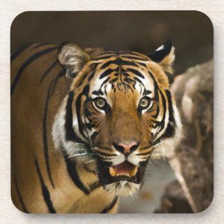 Sibirischer Tiger Untersetzer
