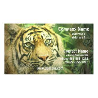 Sibirischer Tiger-Visitenkarte
