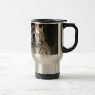 Sibirischer TigerTigress Reisebecher