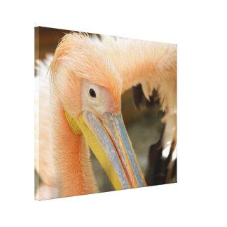 Sie aufpassen Pelikan-Leinwand-Druck Leinwanddruck