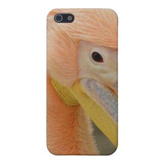 Sie aufpassen Speck-Kasten des Pelikan-I des Schutzhülle Fürs iPhone 5