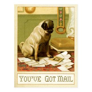Sie haben Post Postkarte