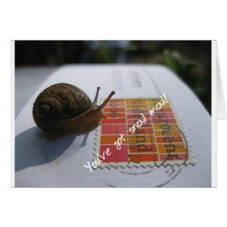 Sie haben snail mail karte
