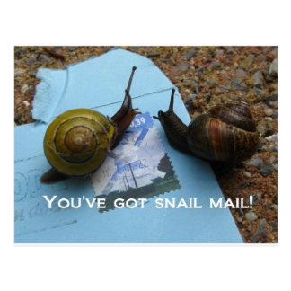 Sie haben snail mail postkarte