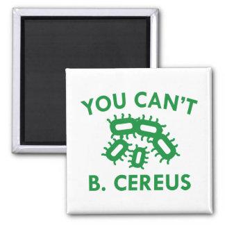 Sie können nicht B. Cereus Quadratischer Magnet