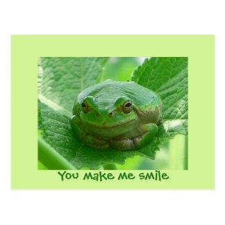 Sie lassen mich lächeln - grüner Frosch Postkarte
