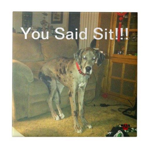 Sie sagten Sit!!! Fliese