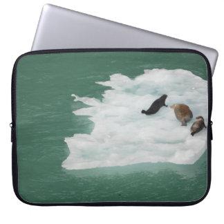 Siegel auf einer Eisberg-Laptop-Hülse Laptopschutzhülle