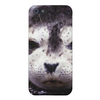 SIEGEL-WELPE iPhone Fall iPhone 5 Schutzhülle