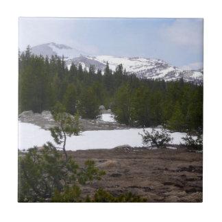 Sierra Nevadaberge und -schnee bei Yosemite Fliese