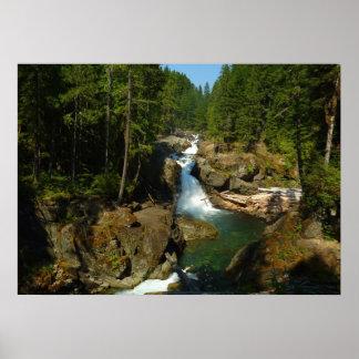 Silber fällt an Nationalpark des Mount Rainier Poster