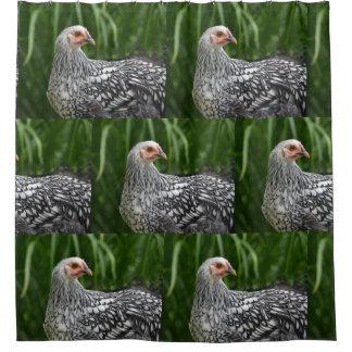 Silber geschnürtes Huhn Duschvorhang
