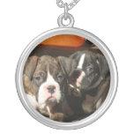 Silberne Halskette der Boxerwelpen