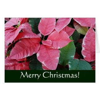 Silberne Stern-Marmor-Poinsettia-Weihnachtskarte Karte