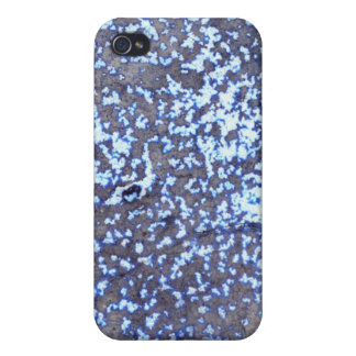 Silberner blauer Rost iPhone 4 Kasten iPhone 4/4S Cover