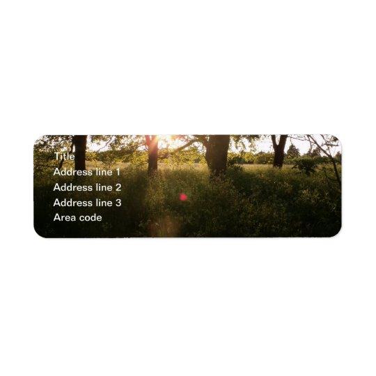 Silhouette-Bäume u. Kleiner Adressaufkleber