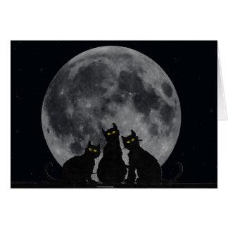 Silhouette der Katzen im Mondschein Karte