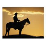 Silhouette des Cowboys auf Pferderuecken am Sonnen Postkarte