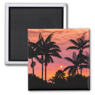 Silhouettierte Palmen, Hawaii Quadratischer Magnet