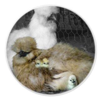 Silkie Hennen mit den Küken, die aus Federn heraus Keramikknauf