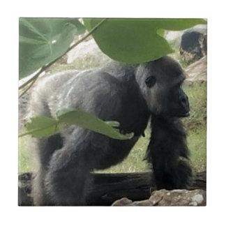 Silverback-Gorilla Keramikfliese