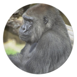 Silverback-Gorilla-Platte Flache Teller