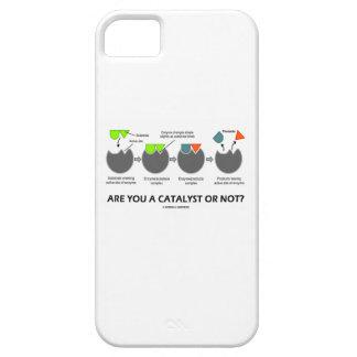 Sind Sie A oder nicht? (Enzym-Substrat) iPhone 5 Etuis