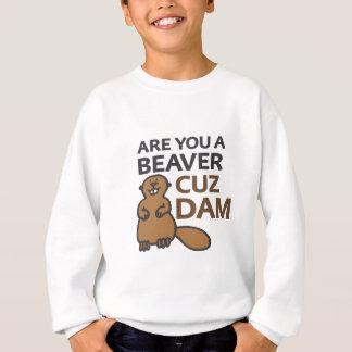 Sind Sie eine Biber Cuz Verdammung Sweatshirt