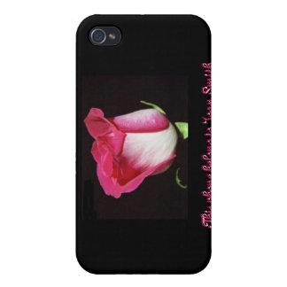 Single-Rose, schwarzer Hintergrund iPhone 4/4S Cover