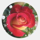 Single-Rosen-Aufkleber Runder Aufkleber