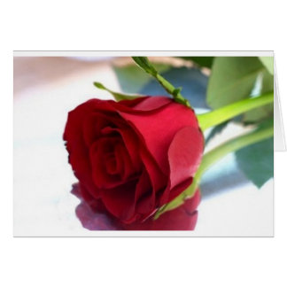 Single-Rote Rose Karte