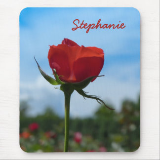 Single-Rote Rose und blauer Himmel Mousepads