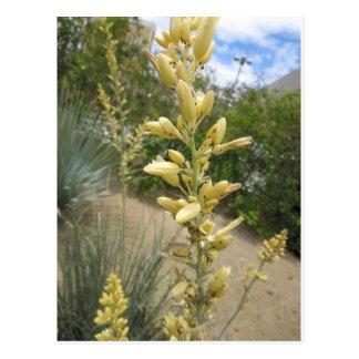 Single-Strang-Bündel-Blumen: Goldene gelbe Postkarte