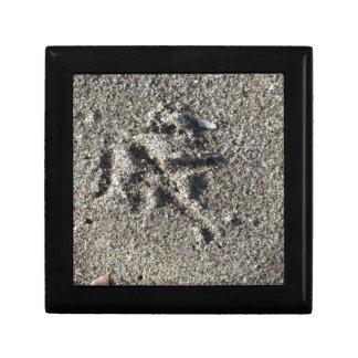 Singleabdruck des Seemöwevogels auf Strandsand Geschenkbox