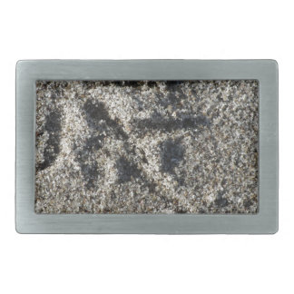 Singleabdruck des Seemöwevogels auf Strandsand Rechteckige Gürtelschnalle