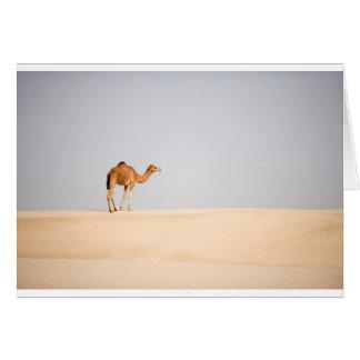 Singlekamel auf arabischen Sanddünen Karte