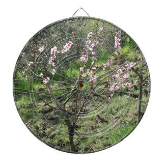 Singlepfirsichbaum in der Blüte. Toskana, Italien Dartscheibe