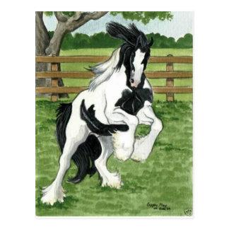 Sinti und Roma Vanner an der Spiel Pferdekunst Postkarte