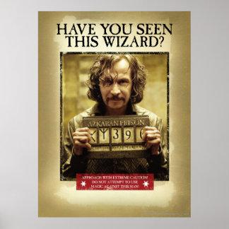 Sirius schwarzes gewolltes Plakat