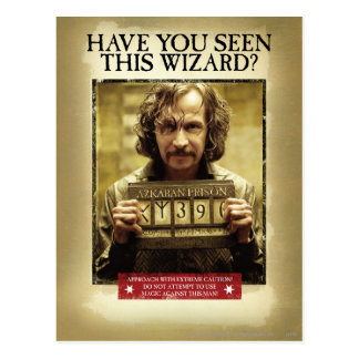 Sirius schwarzes gewolltes Plakat Postkarte