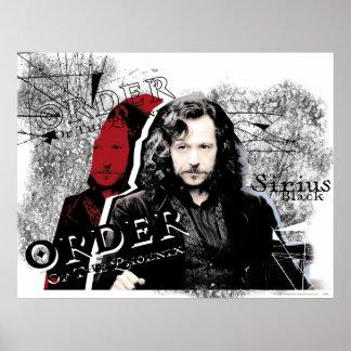 Sirius Schwarzes Poster